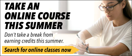 Take an Online Course This Summer