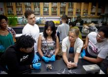 Students working in a CCP lab.
