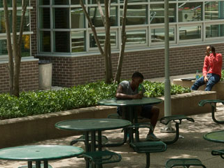 Outside picture of student sitting at table in shade studying